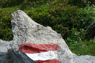 Foto: Tirol Werbung / Mountainbike Tour / Bike Trail Tirol Etappe Kirchberg - Neukirchen / 14.08.2007 08:37:21