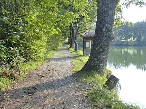 Foto: Barbara Grobbauer / Nordic Walking Tour / ApfelLand Stubenbergsee: Teichrunde / Schielleitner Teiche  / 13.08.2007 10:38:46