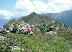 Foto: Tirol Werbung / Wander Tour / Adlerweg Etappe 76 - 5 Gipfel auf einen Streich / 13.08.2007 15:54:56