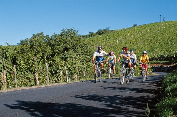 Foto: Günther / Rad Tour / Vita Vital – Der Thermenradweg (R12) / 16.08.2007 14:27:22