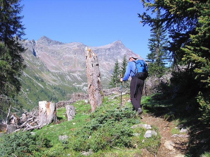 Foto: Andreas Koller / Wander Tour / Von Osttirol nach Kärnten auf den Kruckelkopf (3181 m)  / Aufstieg zur Wangenitzseehütte mit Blick auf die Alkuser Rotspitze (3053 m) / 18.08.2007 13:24:45