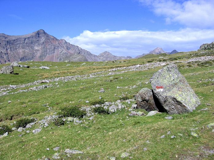 Foto: Andreas Koller / Wander Tour / Von Osttirol nach Kärnten auf den Kruckelkopf (3181 m)  / Am weiten Gaimberger Feld / 18.08.2007 13:23:31