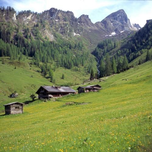 Foto: Kloiber Gabi / Wander Tour / Aigenalmen / Aigenalmen 1.280 m u. 1.342 m / 21.08.2007 17:28:34