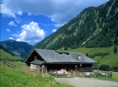 Foto: Kloiber Gabi / Wander Tour / Hub-Grundalm / Hub-Grundalm, 1.311 m / 23.08.2007 10:28:31