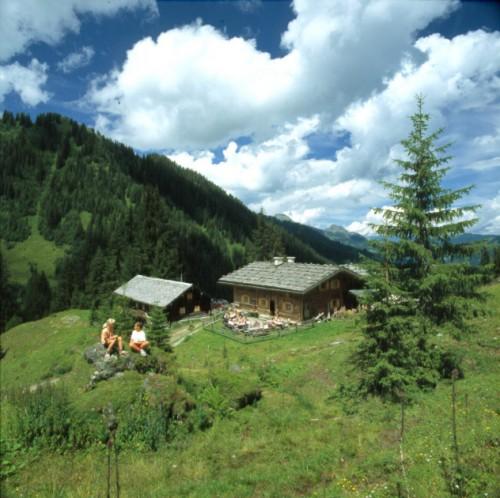 Foto: Kloiber Gabi / Wander Tour / Bachalm / Bachalm, 1.535 m / 23.08.2007 11:12:07