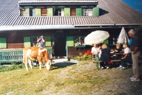 Foto: Kloiber Gabi / Wander Tour / Muggenfedalm - Maurachalm  / Muggenfeldalm, 1.545 m  / 23.08.2007 15:24:34