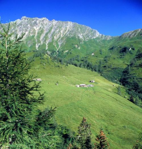 Foto: Großarltal / Wandertour / Karteisalm - Kreuzeck - Glettnalm  / Glettnalm, 1.760 m / 23.08.2007 17:07:57