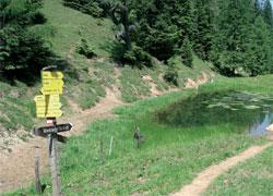 Foto: Tirol Werbung / Wander Tour / Adlerweg Etappe 88 - Von der Alm hinab ins Inntal / 27.08.2007 09:02:38