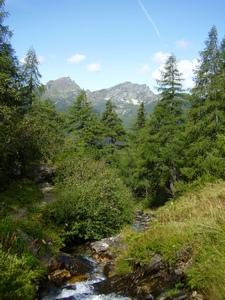 Foto: Milchmädl / Wander Tour / Oberhüttensee - Seekarscharte - Klamml / Aufstieg entlang eines Baches / 29.08.2007 11:01:00