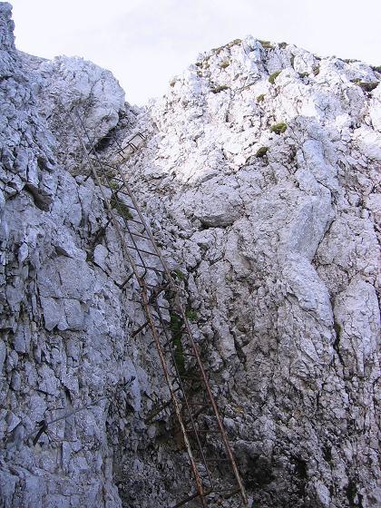 Foto: Andreas Koller / Klettersteig Tour / Karwendel- und Mittenwalder Klettersteig (2384m) / Leitern bei den heiklen Passagen / 31.08.2007 23:17:21
