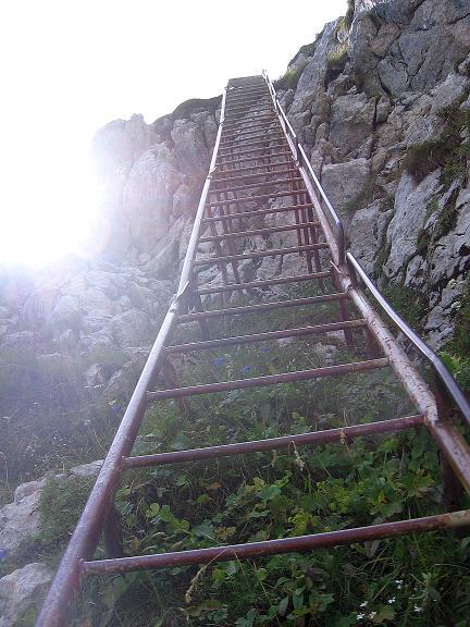 Foto: Andreas Koller / Klettersteig Tour / Karwendel- und Mittenwalder Klettersteig (2384m) / Eine steile Leiter führt zurück auf den Grat / 31.08.2007 23:10:56
